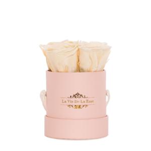 Charitybox: rosa-Box-Charity-beige-Rosen-Rosenshop-soul-s-1000x1334